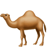 Camel Emoji on Apple macOS and iOS iPhones