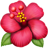 Hibiscus sur Apple macOS et iOS iPhones