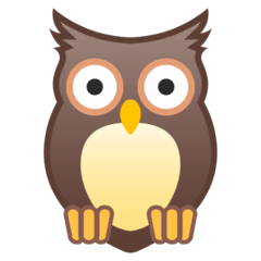 Owl Emoji on Google Android and Chromebooks