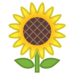 Sunflower Emoji on Google Android and Chromebooks