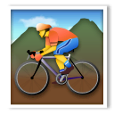 Person Mountain Biking Emoji on LG Phones