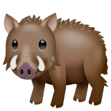 Boar Emoji on WhatsApp