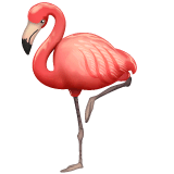 Flamingo Emoji on WhatsApp